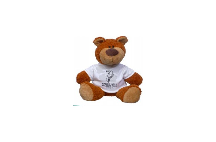"15"" Buster Bear with T-Shirt"
