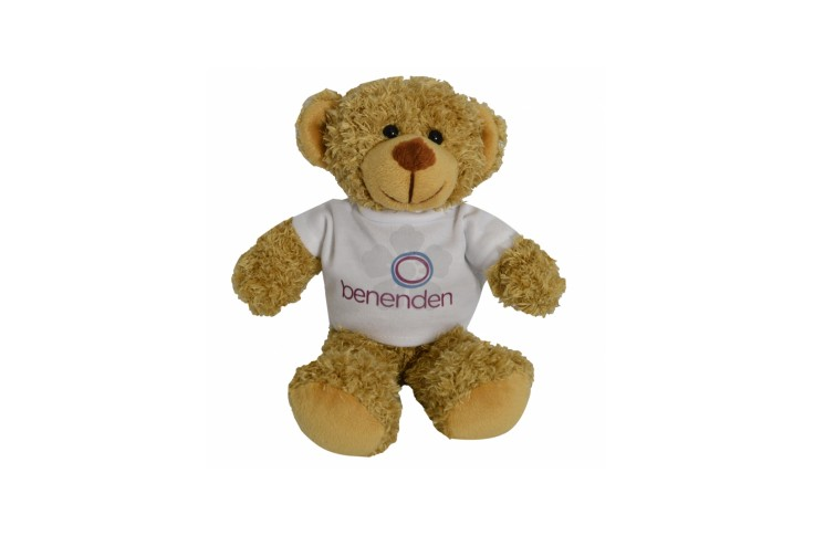20cm Harrison Bear with T-Shirt