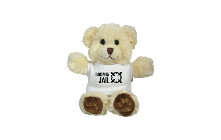 "5"" Chester Bear & T Shirt"