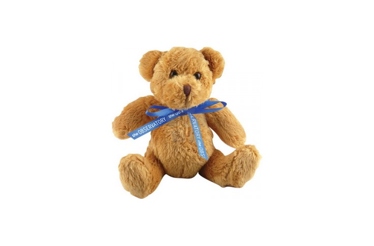5 inch Robbie Bear and Neck Bow