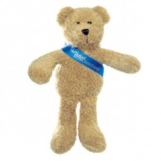 "7"" Scraggy Bear with Sash"