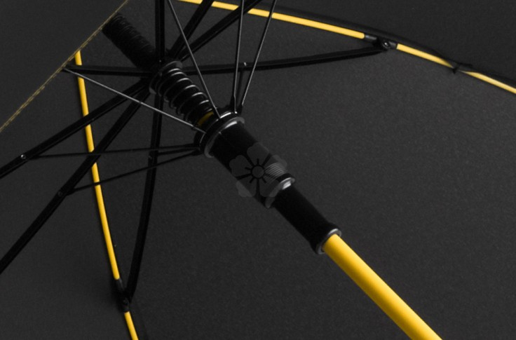 Knighton Walking Umbrella