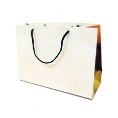 Large White Kraft Bag
