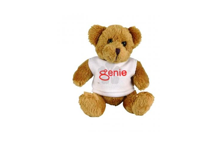 "5"" Robbie Bear and T Shirt"