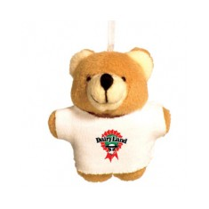 Titchy Bear with T shirt
