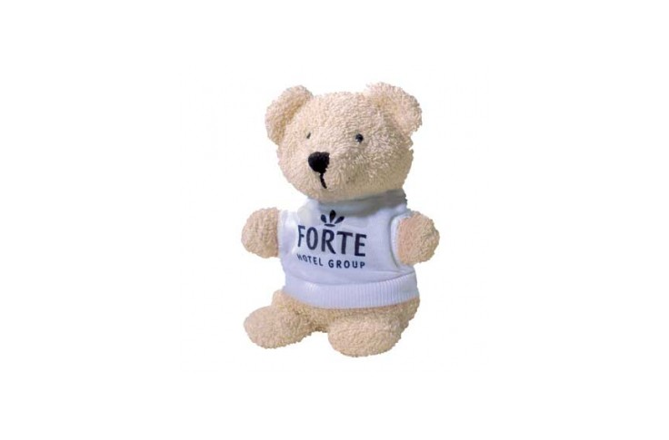 "5"" Beanie Bear with T Shirt"