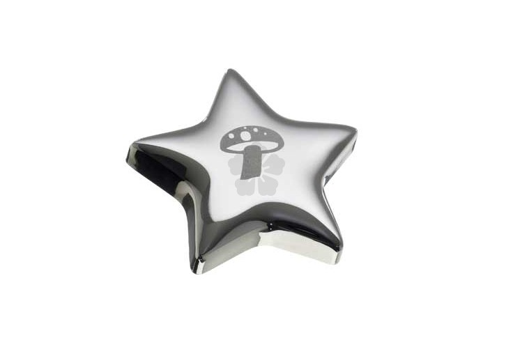 Star Fridge Magnet