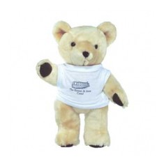 "10"" Honey Bear with T Shirt"