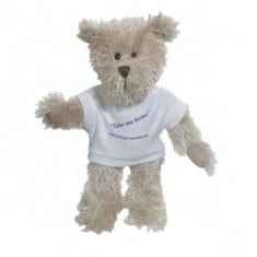 "10"" Rocky Bear with T Shirt"