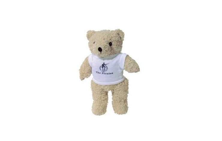 "12"" Shaggy Bear with T Shirt"