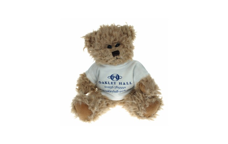 20cm Bambury Bear with T-Shirt