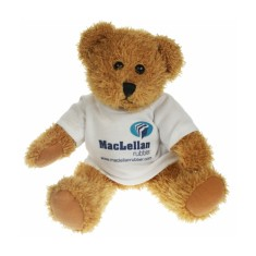 25cm Sparkie Bear with White T Shirt