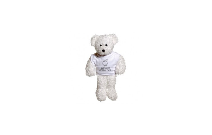 "8"" Snowy Bear with T Shirt"