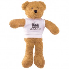 15 Inch Scraggy Bear with White T Shirt