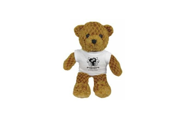 "9"" Jango Bear and T Shirt"