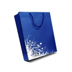 Large Gloss Laminated Bag