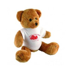 "10"" Robbie Bear and T Shirt"
