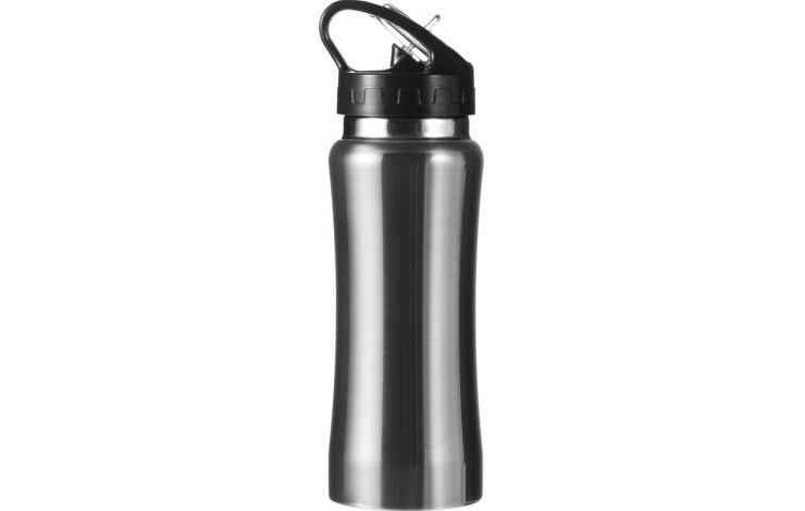 Stainless Steel Drinking Bottle