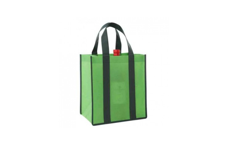 Verdant Non Woven Bottle Bag